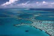 Great Barrier Reef: Hardy Reef - Heart Reef